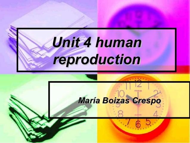 Unit 4 humanreproduction   María Boizas Crespo