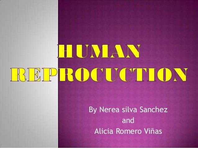 By Nerea silva Sanchez         and Alicia Romero Viñas