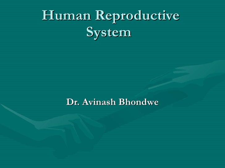 Human Reproductive System   Dr. Avinash Bhondwe