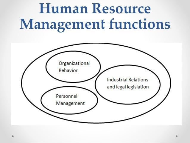 human resource management and marketing personnel