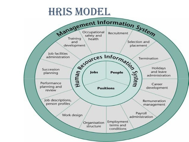 importance of the hris function within an organization Personnel usage within an organization  benefits of human resource information systems (hris)  almost all hr managers understand the importance of hris,.