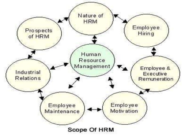 hrm and organisational turnaround selfridges 2011-8-16 21:32:55 女人我最大20110816产品清单 大师指点!立刻年轻十岁的服装发型秘技.