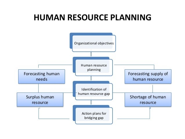 human resources action plan template - human resource management ppt