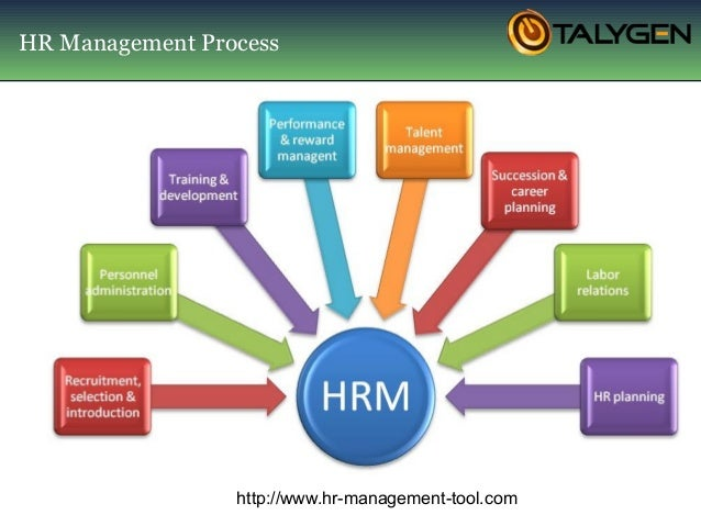 management thesis in hr The effectiveness of a human resources function the resurgence of interest in the domain of people-management skills, and the role that hr as a function can.