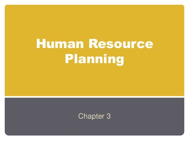 Human Resource   Planning     Chapter 3