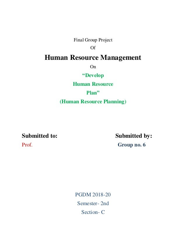 "Final Group Project Of Human Resource Management On ""Develop Human Resource Plan"" (Human Resource Planning) Submitted to: ..."