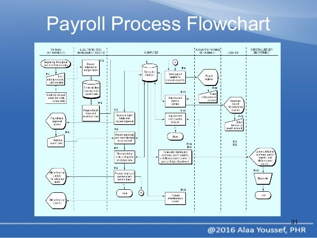 HRM & Payroll Process by Alaa Youssef