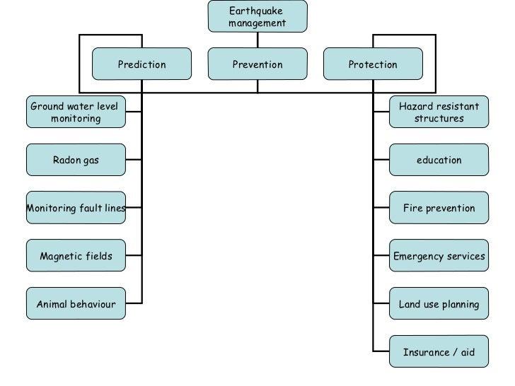 Emergency disaster management essay