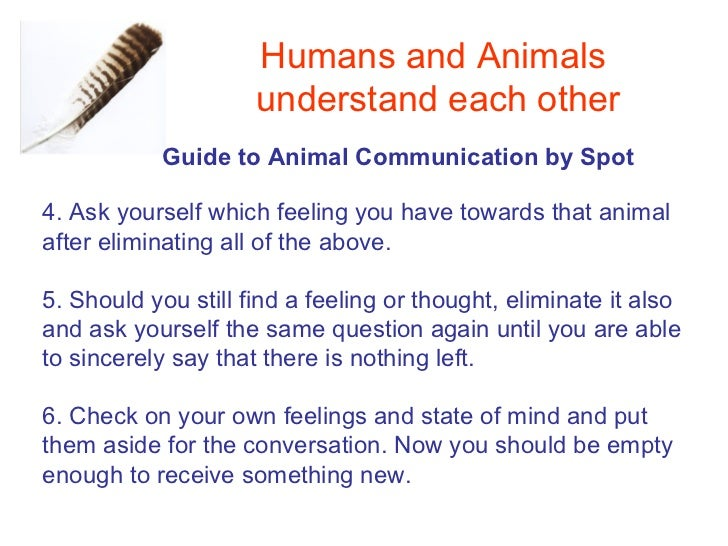 How animals learn from each other - ScienceDirect
