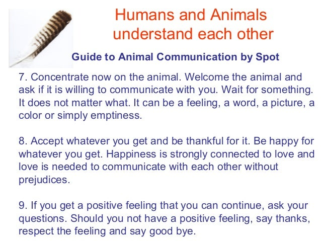 can animals communicate with each other