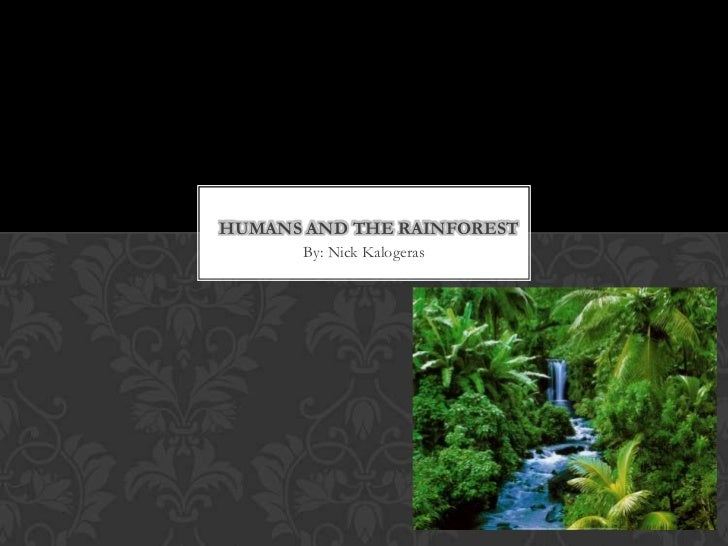 HUMANS AND THE RAINFOREST       By: Nick Kalogeras
