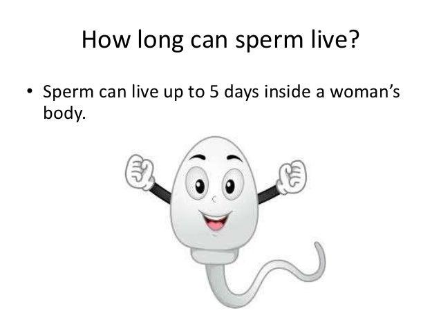 How long can sperm survive inside a woman