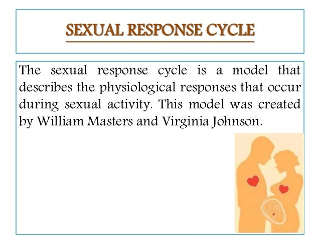 The human sexual response cycle