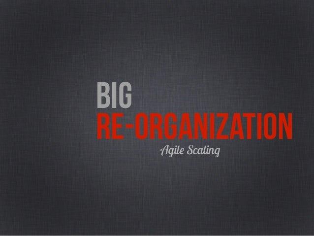 BIG RE-ORGANIZATIONPortfolio Definition