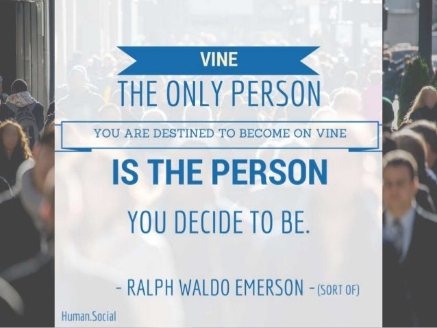 "i ""T  T T YOU ARE DESTINED TO BECOME ON VINE 