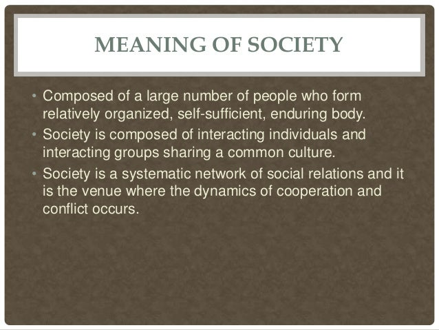 what is the meaning of society
