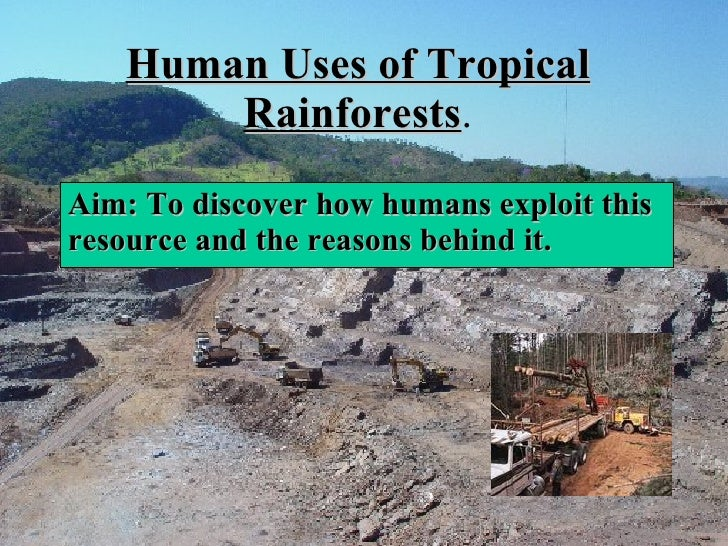 Human Uses of Tropical Rainforests . Aim: To discover how humans exploit this resource and the reasons behind it.