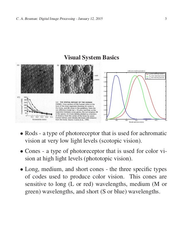 """an analysis of the human visual sense Human sensory reception: human sensory reception, means by which humans react to changes in external and internal environments ancient philosophers called the human senses """"the windows of the soul,"""" and aristotle described at least five senses—sight, hearing, smell, taste, and touch."""