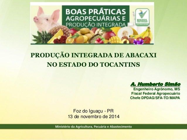 Foz do Iguaçu - PR 13 de novembro de 2014 PRODUÇÃO INTEGRADA DE ABACAXI NO ESTADO DO TOCANTINS A. Humberto Simão Engenheir...