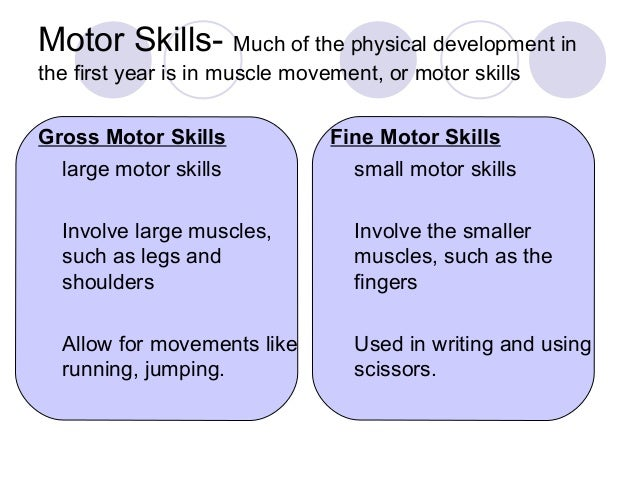 observation 3 years old physical development gross and fine motor The improved observation  aim to observe jason's gross motor  to learn more about gross motor skills in 5 year old  stage of physical development.