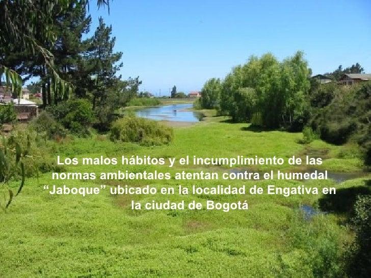 """Los malos hábitos y el incumplimiento de las normas ambientales atentan contra el humedal""""Jaboque"""" ubicado en la localidad..."""