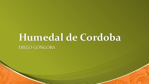 Humedal de Cordoba DIEGO GÓNGORA