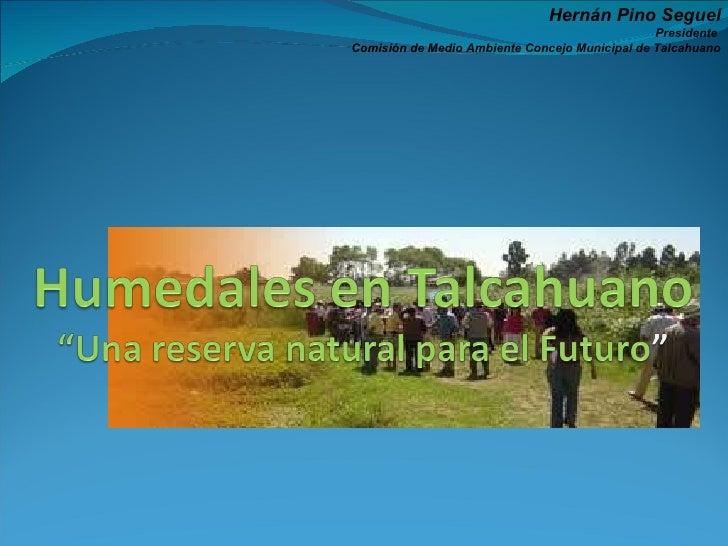 Hernán Pino Seguel Presidente  Comisión de Medio Ambiente Concejo Municipal de Talcahuano