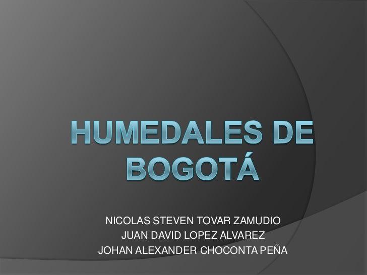 NICOLAS STEVEN TOVAR ZAMUDIO    JUAN DAVID LOPEZ ALVAREZJOHAN ALEXANDER CHOCONTA PEÑA