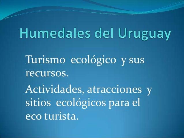 Turismo ecológico y sus recursos. Actividades, atracciones y sitios ecológicos para el eco turista.