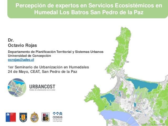Percepción de expertos en Servicios Ecosistémicos en Humedal Los Batros San Pedro de la Paz Dr. Octavio Rojas Departamento...