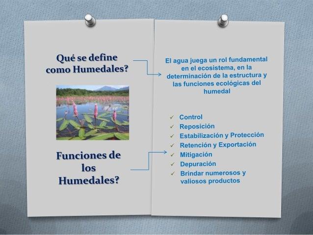 Humedales venezuela fabian Slide 2