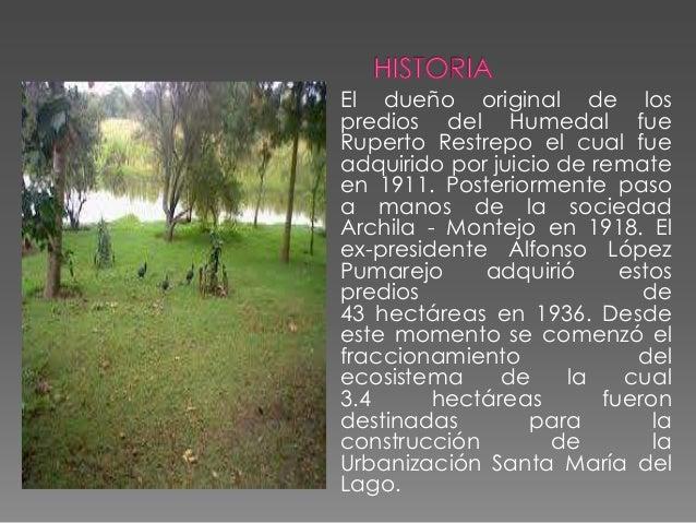 Para esta época el ecosistema contaba con dos cuerpos de agua bien definidos y parte de sus terrenos eran usados para acti...