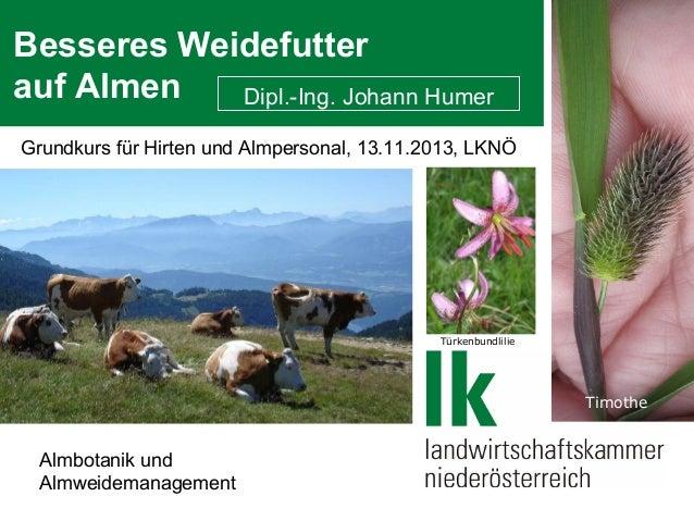 Besseres Weidefutter auf Almen Dipl.-Ing. Johann Humer Grundkurs für Hirten und Almpersonal, 13.11.2013, LKNÖ  Türkenbundl...