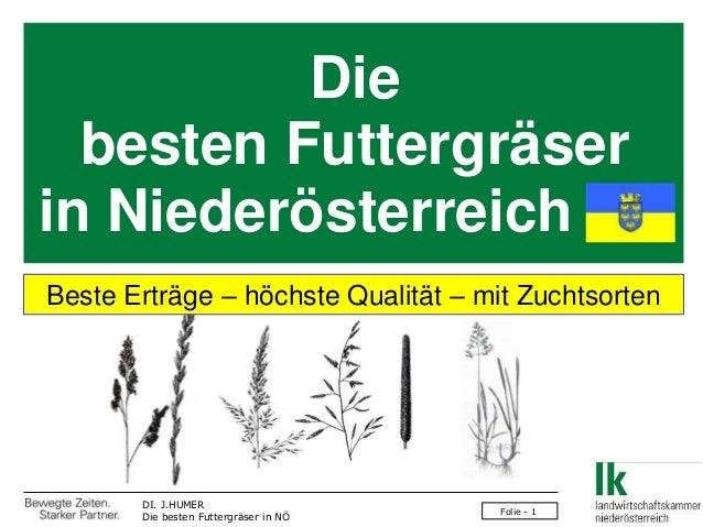 Die  besten Futtergräserin NiederösterreichBeste Erträge – höchste Qualität – mit Zuchtsorten       DI. J.HUMER           ...
