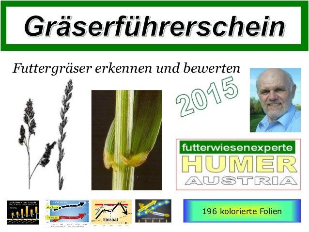 Futtergräser erkennen und bewerten 196 kolorierte Folien