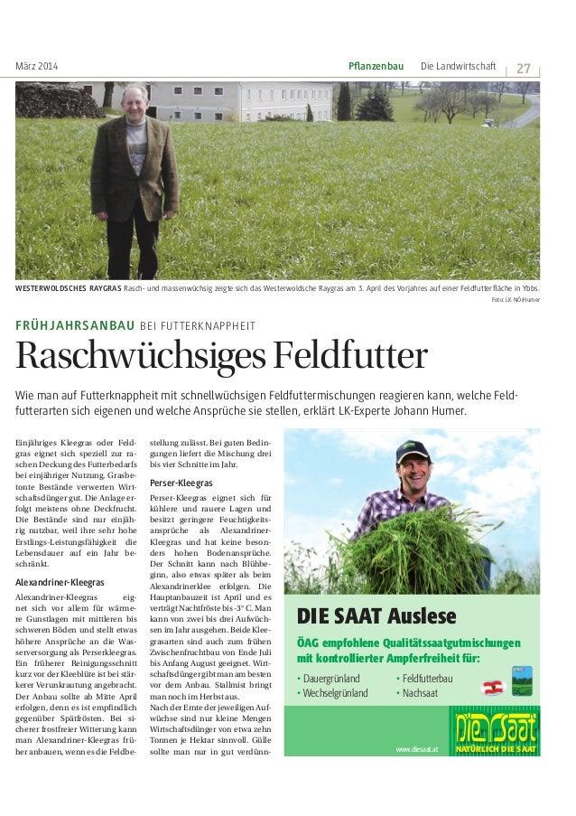 März 2014 Die Landwirtschaft | 27 | stellung zulässt. Bei guten Bedin- gungen liefert die Mischung drei bis vier Schnitte ...