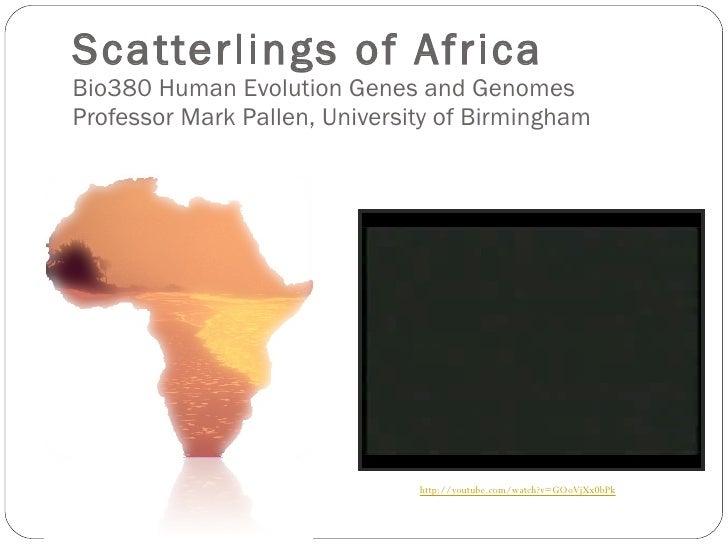 Scatterlings of Africa  Bio380 Human Evolution Genes and Genomes Professor Mark Pallen, University of Birmingham http://yo...