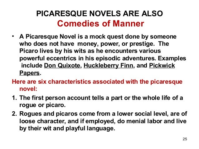 picaresque novel definition