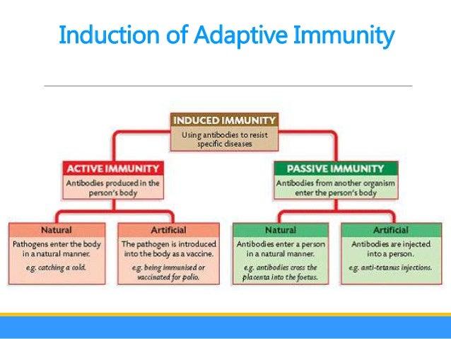 non specific immune response