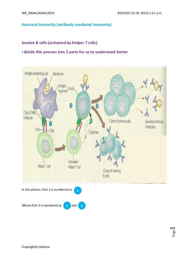 immunity humoral slideshare antibody mediated nik