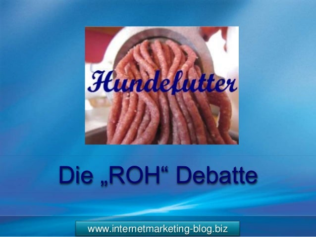 "www.internetmarketing-blog.biz Die ""ROH"" Debatte"