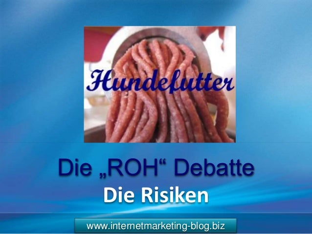 "www.internetmarketing-blog.biz Die ""ROH"" Debatte Die Risiken"