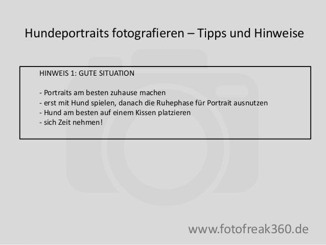 Hundeportraits fotografieren – Tipps und Hinweise www.fotofreak360.de HINWEIS 1: GUTE SITUATION - Portraits am besten zuha...