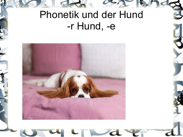 Phonetik und der Hund  -r Hund, -e