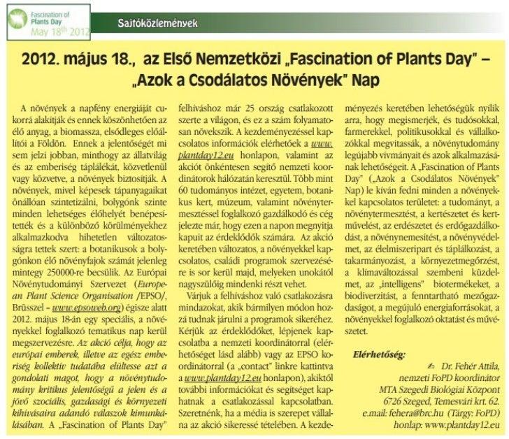 Parkot fogadott örökbe az ICI Interaktív Kommunikációs Zrt.Június 2-án az ICI Interaktív Zrt. és a Meteo Klinika munkatárs...