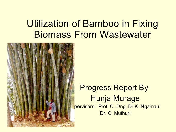 Utilization of Bamboo in Fixing Biomass From Wastewater Progress Report By  Hunja Murage Supervisors:  Prof. C. Ong, Dr.K....