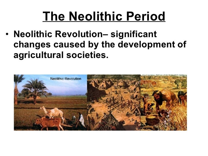 economic and social changes during paleolithic and neolithic periods View test prep - quiz 1 essay questions from arth 1100 at st catherine discuss the social and economic changes that took place between the paleolithic and neolithic periods explain how these.