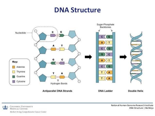 Unique Populations - 2019 CURE OM Symposium Slide 3