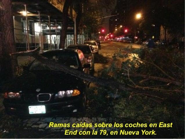 Ramas caídas sobre los coches en East   End con la 79, en Nueva York.