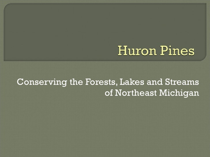 Conserving the Forests, Lakes and Streams of Northeast Michigan
